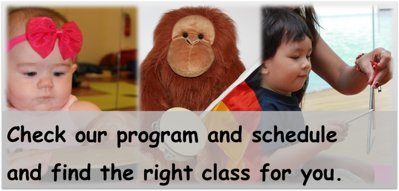 Check our program and schedule and find the right class for you.